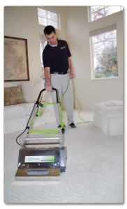 carpet cleaning service long beach - Dry Organic Carpet Cleaning