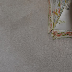 carpet cleaning service long beach dry carpet cleaning - pet stain after