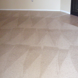 carpet cleaning service long beach dry carpet cleaning - dry carpet cleaning after