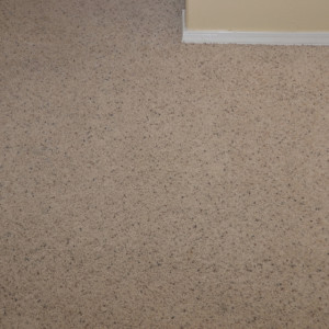 carpet cleaning service long beach - carpet cleaning - dry organic carpet cleaning - stains after