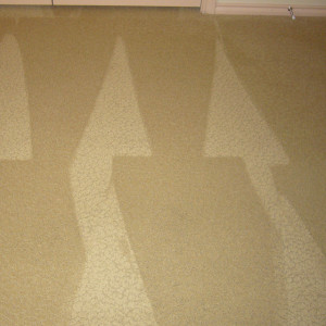 carpet cleaning service long beach dry carpet cleaning - stain after