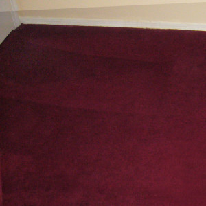 carpet cleaning service long beach dry carpet cleaning - tile cleaning a