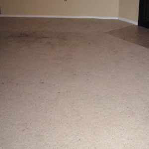 carpet cleaning service long beach dry carpet cleaning - dry carpet cleaning before