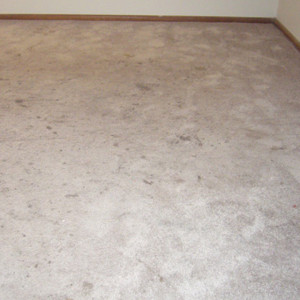 carpet cleaning service long beach dry carpet cleaning - carpet cleaning before