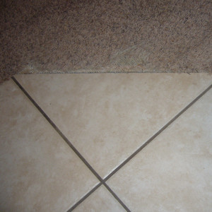 carpet cleaning service long beach - carpet cleaning - dry organic carpet cleaning - transition repair before