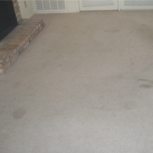 carpet cleaning service long beach Dry Carpet Cleaning - the power of dry