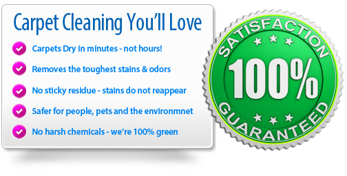 Dry organic carpet cleaning in Long Beach California