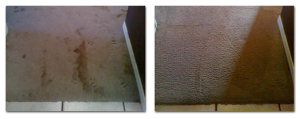 carpet cleaning service long beach